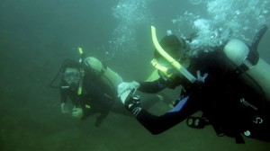 open water class novemberTHumb