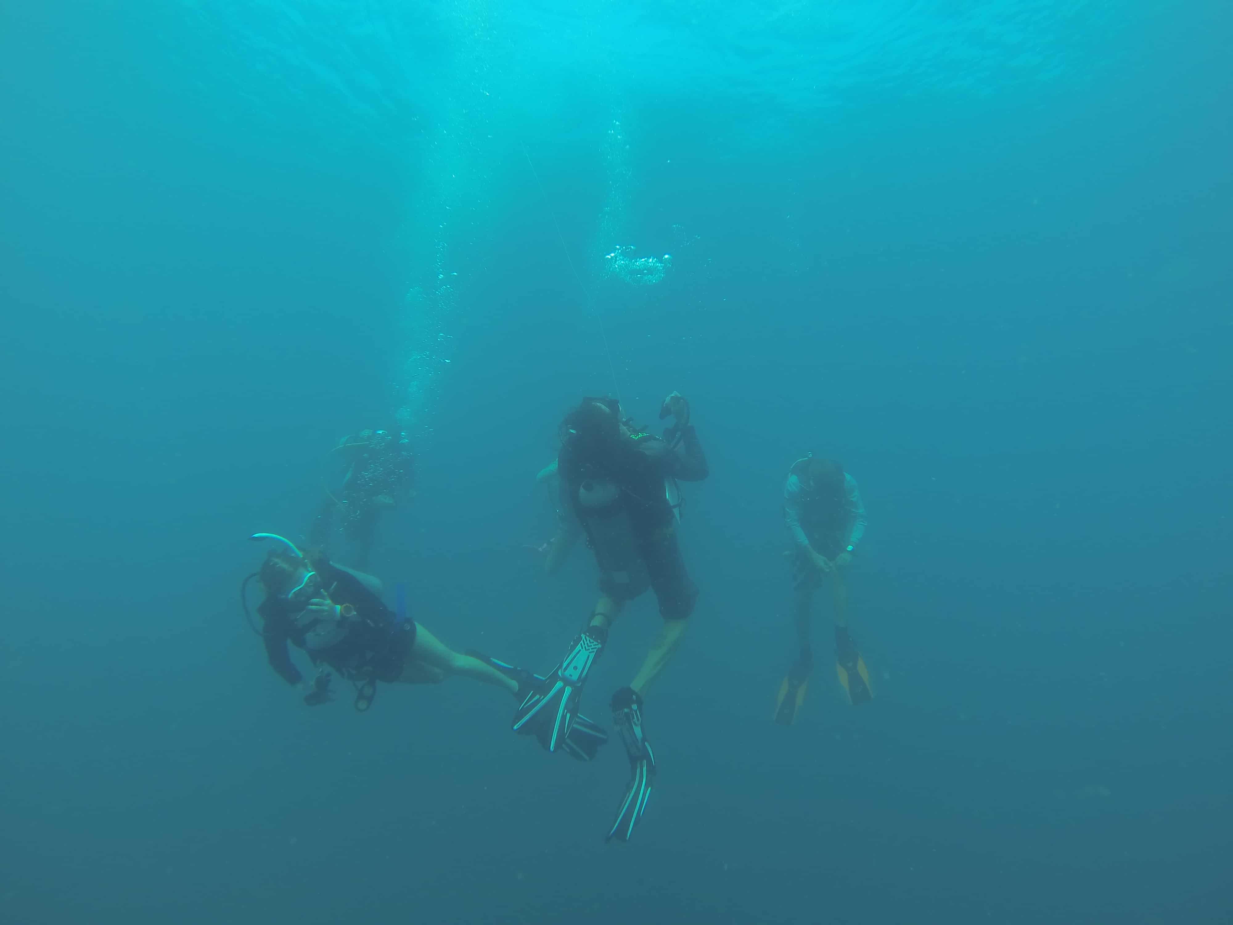 costarica, dive, scuba, PADI, oceansunlimited