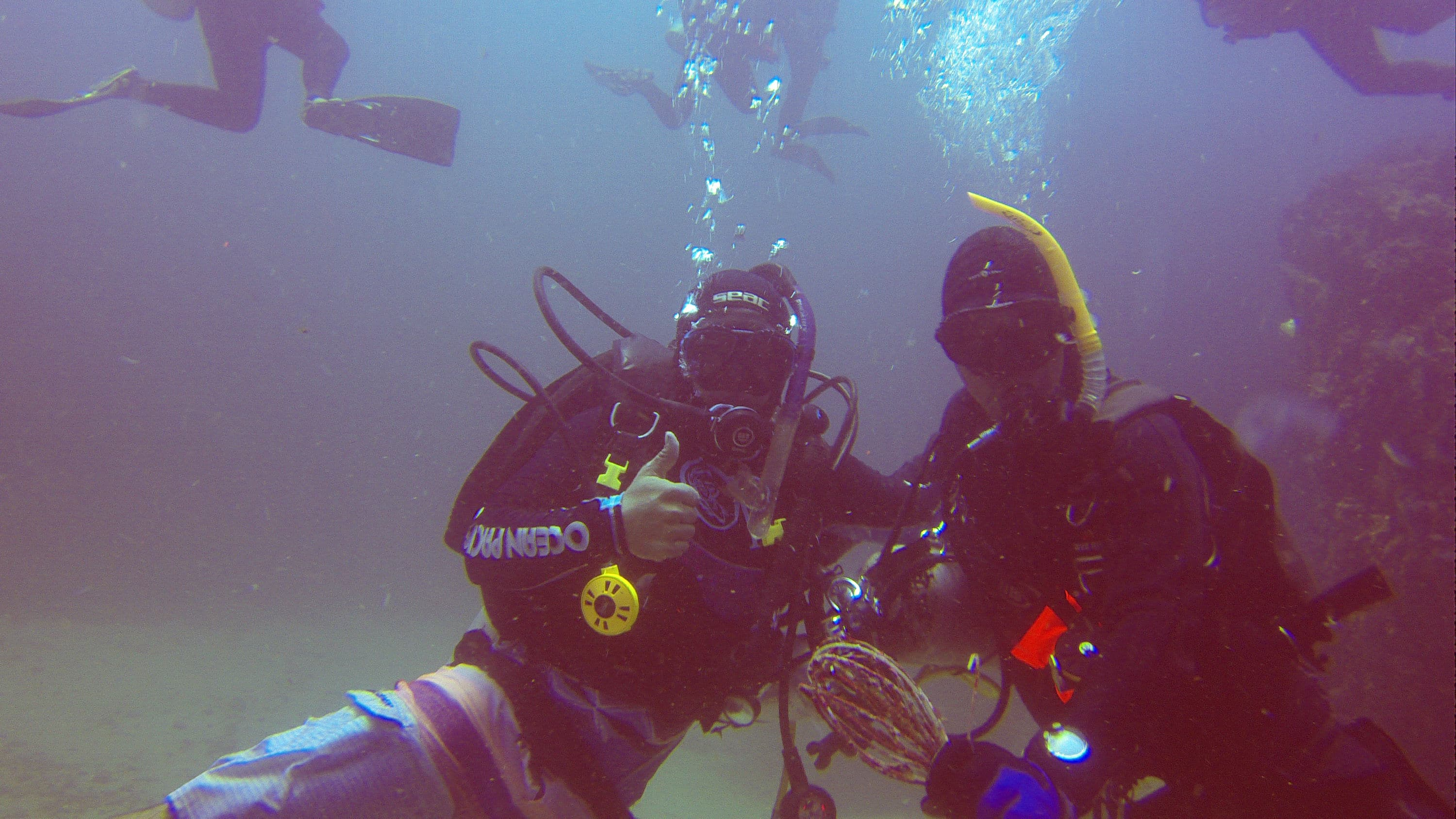 Thinking about your scuba career…Divemaster or PADI Instructor ?