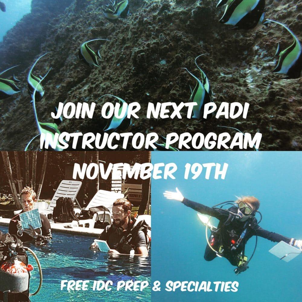 PADI Instructor Program November