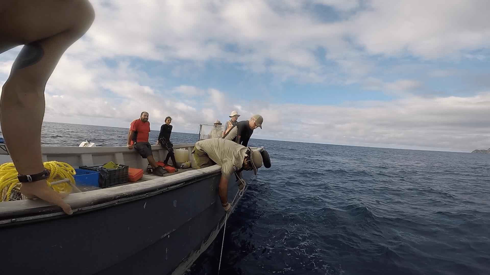 Cocos Island Research Adventure – Part 3