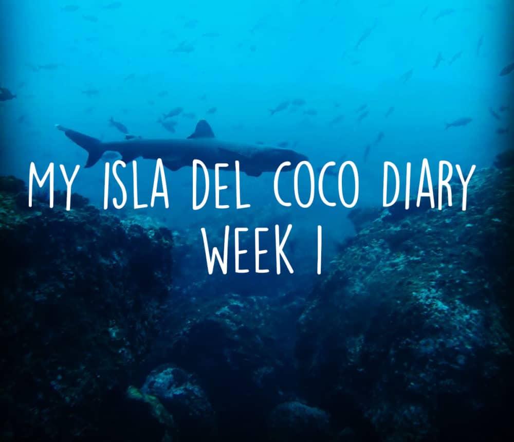 isla del coco volunteer diary