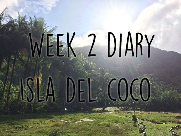 week 2 isla del coco