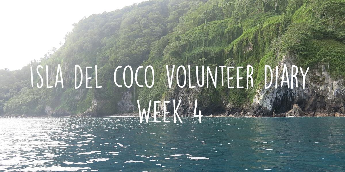 My last week on Isla del Coco – Volunteer diary week 4