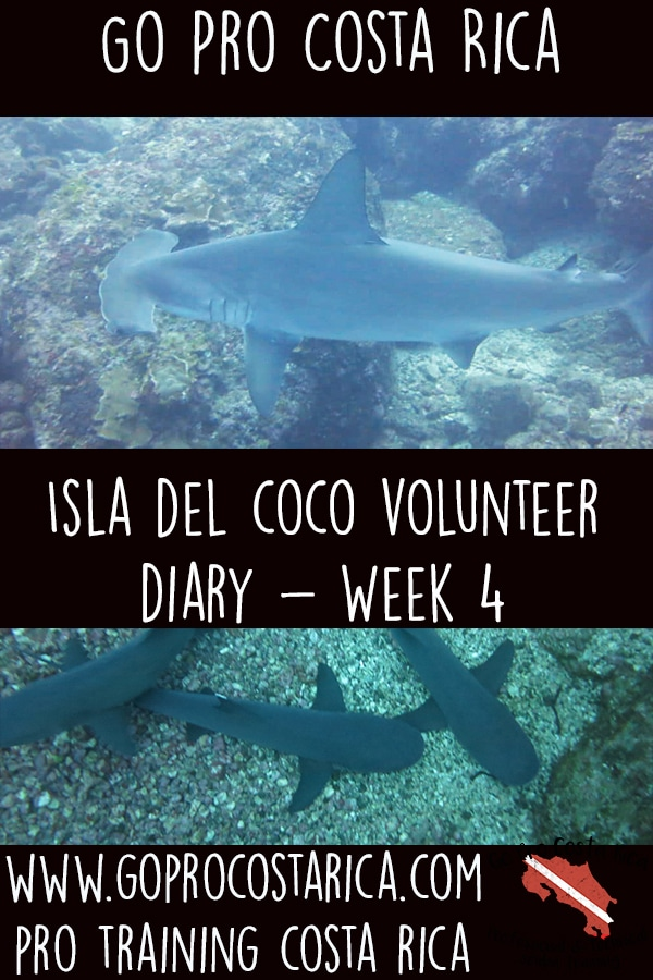 week 4 on isla del coco