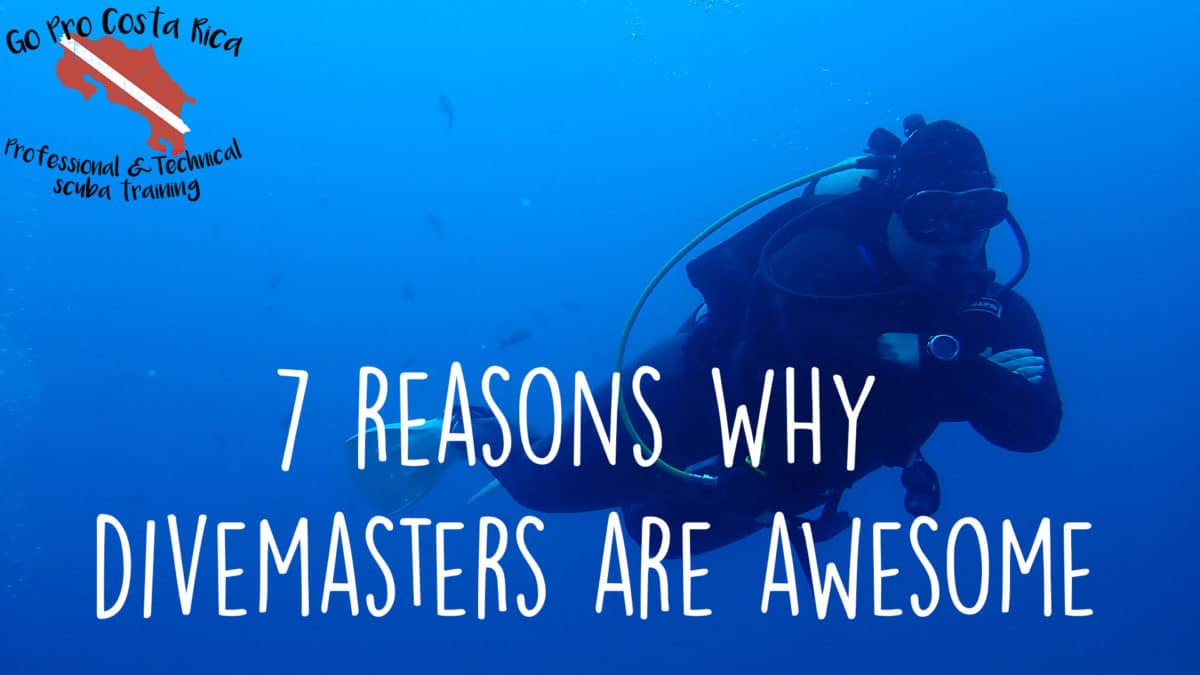 7 reasons why divemasters are awesome