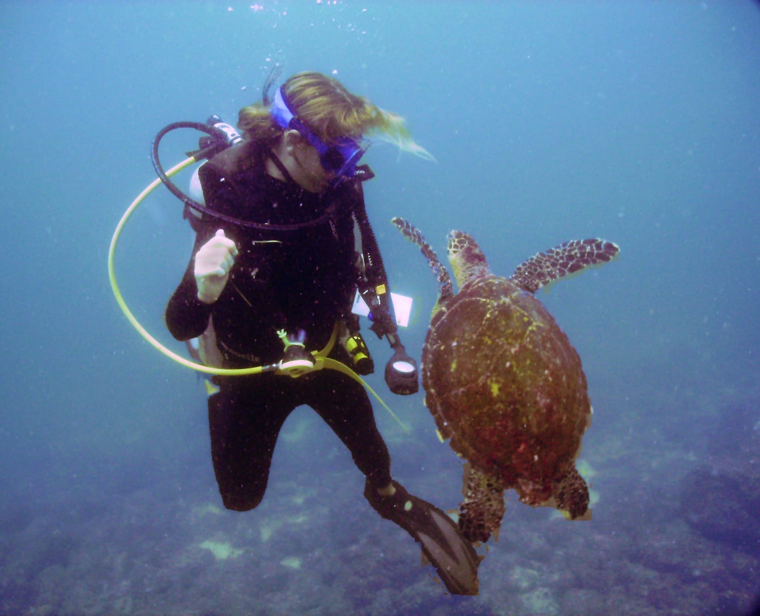 working as a scuba instructor