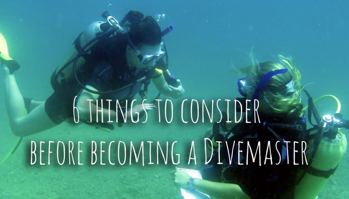 consider becoming a PADI Divemaster