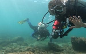 Eco Divemaster in Costa rica