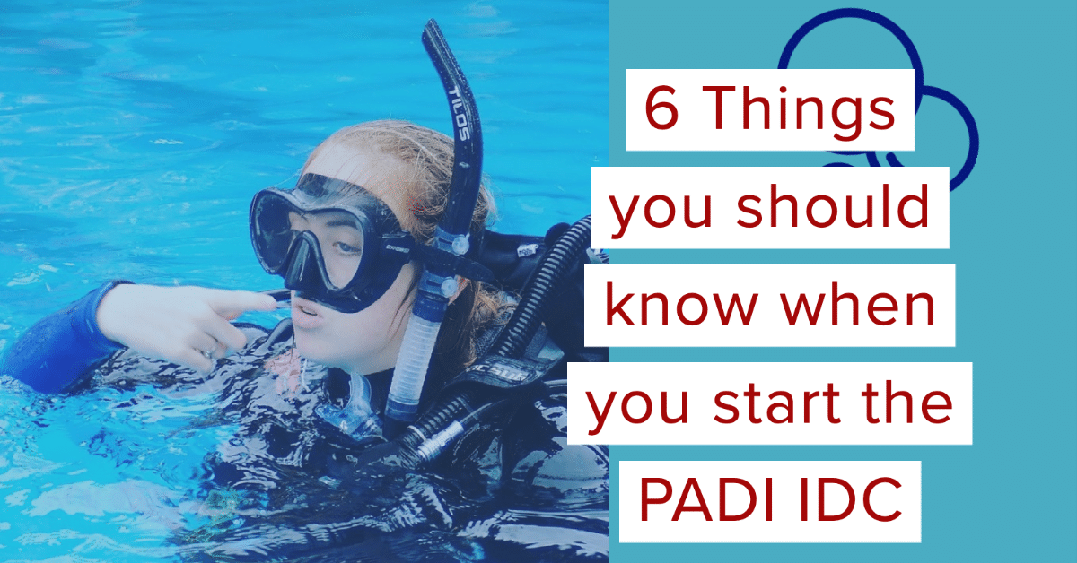 The PADI IDC – 6 Things you should know before starting