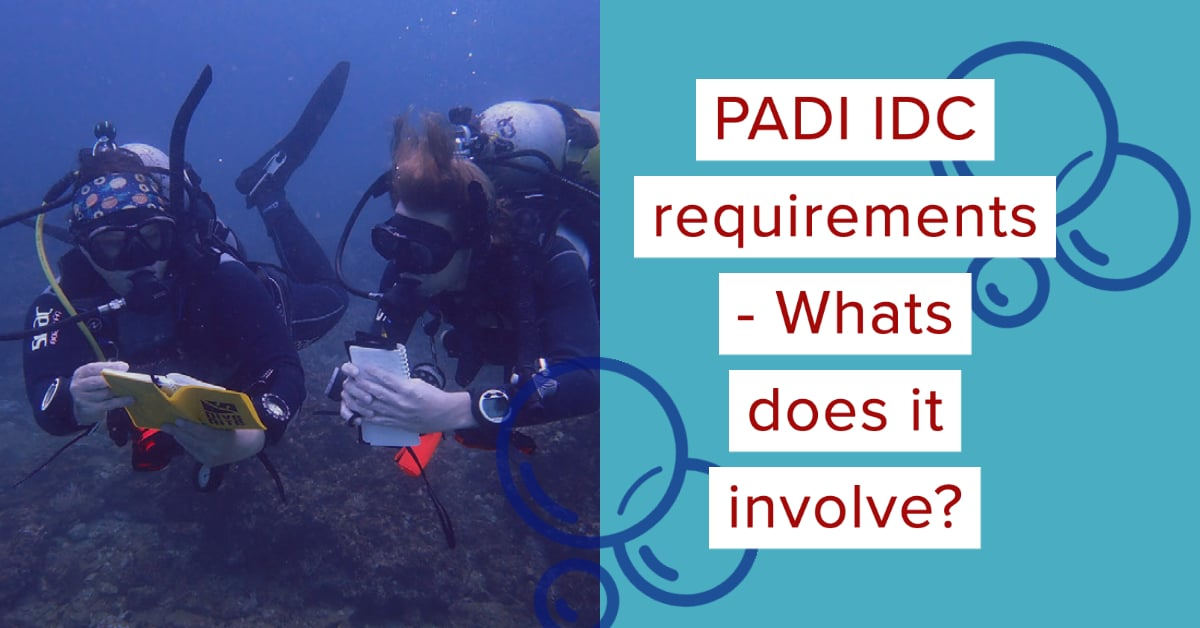 PADI IDC requirements