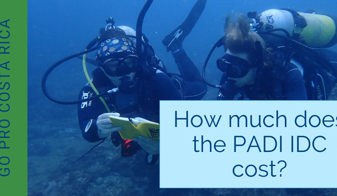How much does the PADI IDC cost?